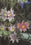 Поделки своими руками: цветы, сплетенные из бисера. Описание + схемы