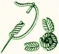 Уроки ручного вязания для начинающих: урок 29