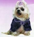 Одежда для животных: фиолетово-сиреневый жакет для собаки. Описание + схемы
