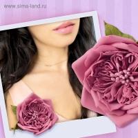Набор для создания броши из фоамирана Пудровая роза