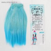 Волосы - тресс для кукол Прямые длина волос 20 см, ширина 100 см, голубые