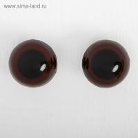 Глаза винтовые с заглушками, размер 2,4 см, цвет коричневый, 1шт
