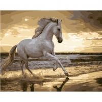 Альбом картины по номерам (склад Ростов-на-Дону) 40х50 см в ассортименте (GX 30903 Ретивый конь)