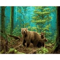 Альбом картины по номерам (склад Ростов-на-Дону) 40х50 см в ассортименте (GX 34201 Медведица с потомством)