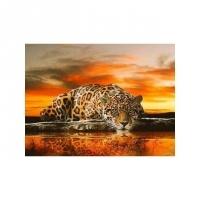 Альбом картины по номерам (склад Ростов-на-Дону) 40х50 см в ассортименте (GX 27069 Леопард у воды)