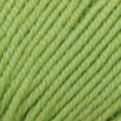 Пряжа Сеам Шампань (Пряжа Сеам Шампань, цвет 1010 зелёное яблоко)