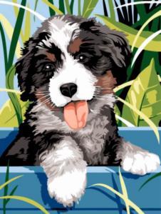 Картина по номерам EX5255 Озорной щенок