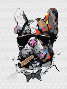 Картина по номерам EX5322 Брутальный пес