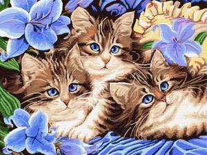 Картина по номерам EX5689 Котята в цветах