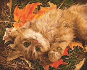 Картина по номерам GX5751 Рыжий котенок