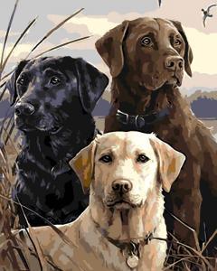 Картина по номерам MG6547 Три верных друга