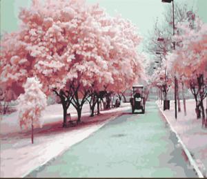 Картина по номерам MG540 Розовое настроение