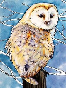 Картина по номерам ME1124 Амбарная сова