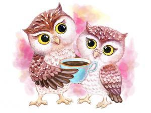 Картина по номерам ME1125 Милые совы