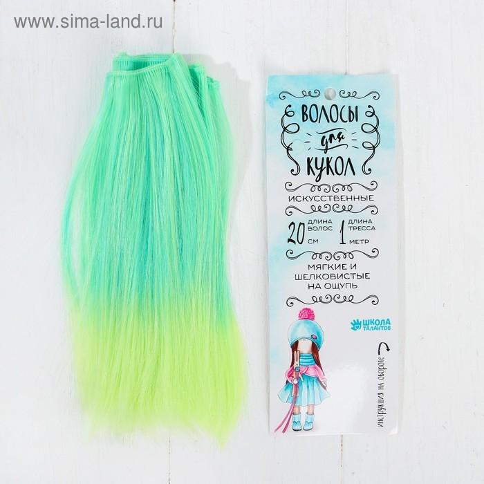 Волосы - тресс для кукол Прямые длина волос 20 см, ширина 100 см, №LSA049   3588477