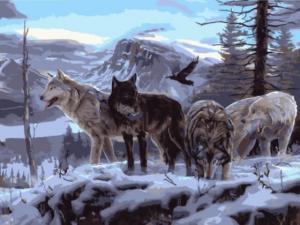 Картина по номерам EX5806 Волчья стая на скале