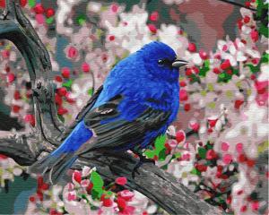 Картина по номерам GX23193 Синяя птица