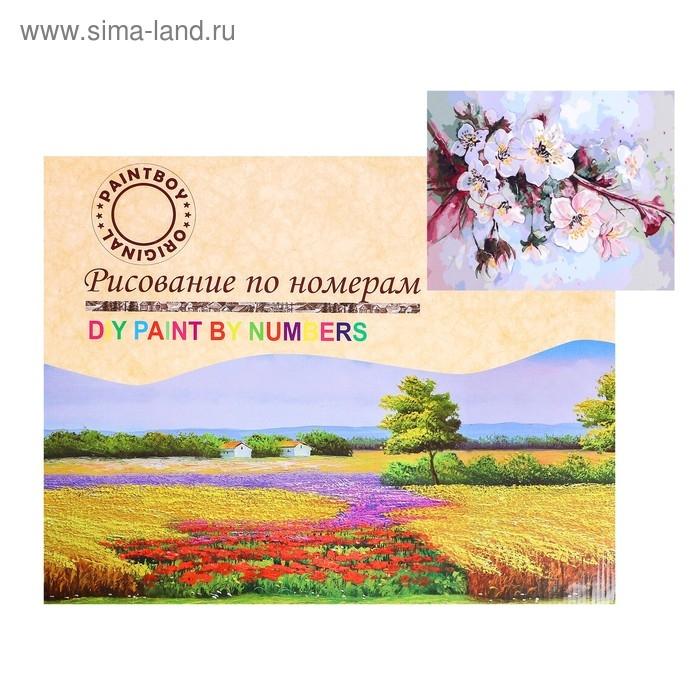 Картина по номерам на холсте Цветение вишни 40х50 см GX34094