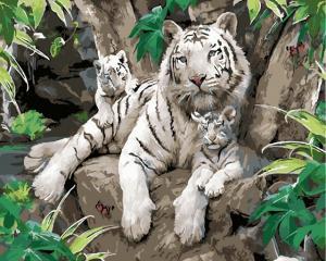 Картина по номерам MG6046 Белые тигры