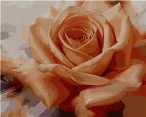Картина по номерам VA-1496 Роза 40х50 см