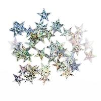 Пайетки Звездочки 13мм Астра 10г (50112 серебро голограмма 7721052)