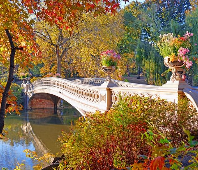 Картина по номерам GS 1377 Осенний парк с мостиком 40*50 см