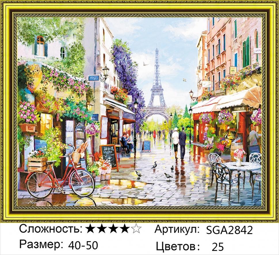 Алмазная мозаика на подрамнике полной выкладки круглые стразы SGA 2842 Цветочная улица 40х50 см