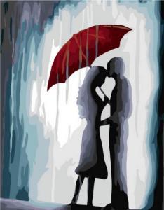 Картина по номерам EX5697 Нежность под дождем