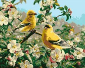 Картина по номерам GX8476 Желтые птички