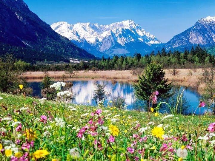 Картина по номерам GX 7809 Горный пейзаж 40х50 см