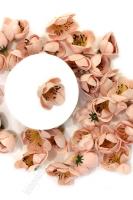 Головки цветов Крокус 4 см, персиковый
